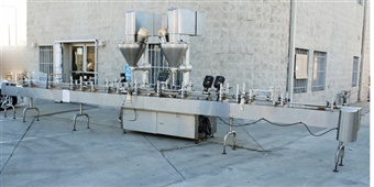EDT Dual-head Automatic Auger Filler